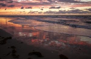 Beach Environs