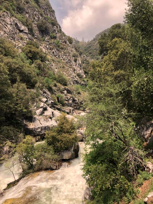 West10Sequoia
